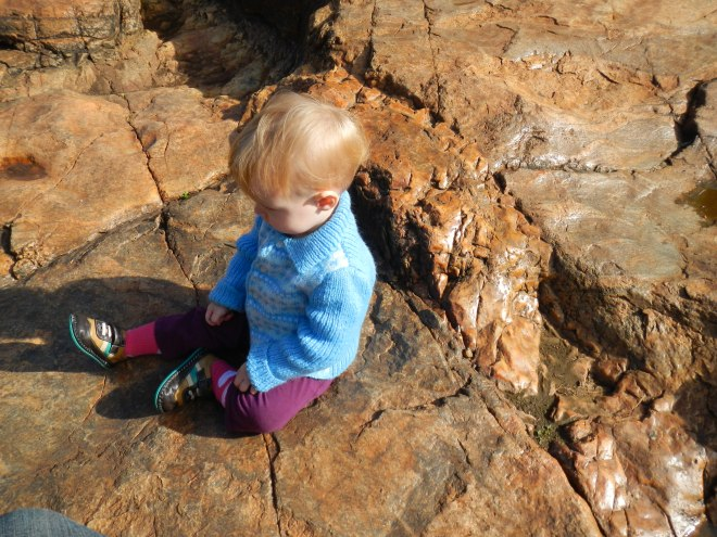 For the geologists: granitic outcrop with cross-cutting felsic intrusion near Serpentine Falls, WA - grumpy baby for scale.
