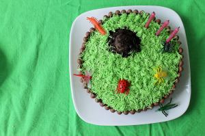 Creepy crawly garden cake :)